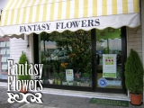 Fantasy Flowers