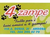 4 zampe - andora - animali - cane - gatto